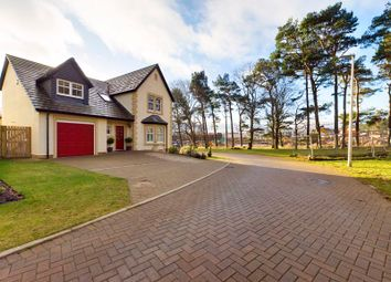 Thumbnail 4 bed detached house for sale in Bizzyberry Crescent, Biggar