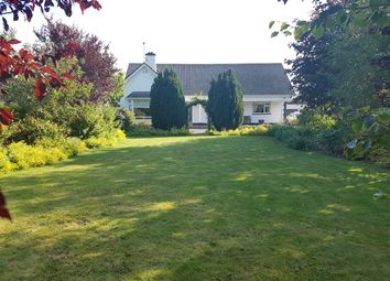 Thumbnail 5 bed bungalow for sale in Killeshin Road, Carlow Town, Carlow