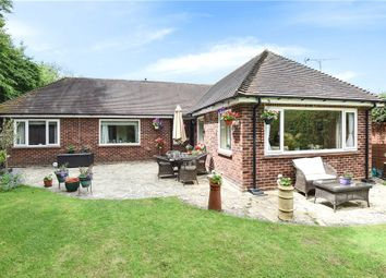 Thumbnail 3 bed detached bungalow for sale in North End Lane, Sunningdale, Berkshire