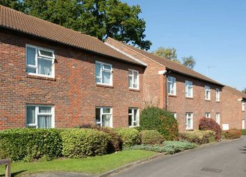 Thumbnail 2 bed property for sale in Halleys Court, Woking