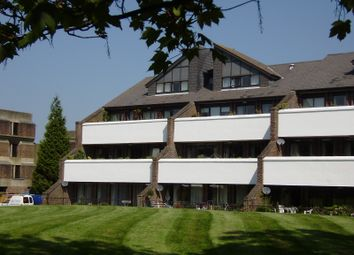 Thumbnail 3 bed flat to rent in Tollhouse Close, Chichester
