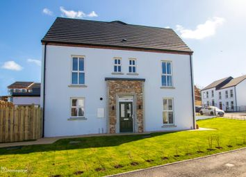 Thumbnail 4 bed semi-detached house for sale in New Phase At The Hillocks, Altnagelvin, Londonderry