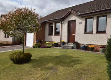 Thumbnail 3 bed detached bungalow for sale in Honeyberry Drive, Blairgowrie
