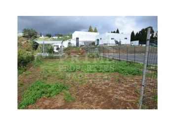 Thumbnail Property for sale in Nogueira, Camacha, Santa Cruz