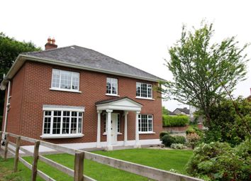 Thumbnail 5 bed detached house for sale in 4 The Elms, North Circular Road, Limerick
