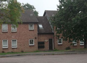 Thumbnail Studio to rent in Swinderby Drive, Oakwood, Derby.