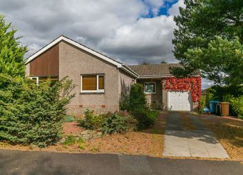 Thumbnail 4 bed detached bungalow for sale in Mauricewood Rise, Penicuik