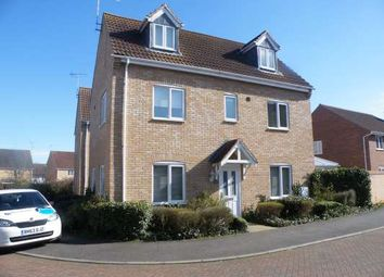 Thumbnail 4 bed detached house to rent in East Of England Way, Orton Northgate, Peterborough