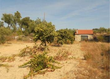 Thumbnail Land for sale in Castelo Branco, Castelo Branco (City), Castelo Branco, Central Portugal
