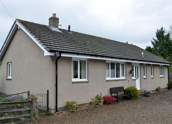 Thumbnail 3 bed detached bungalow for sale in College View East, Greenhead, Cumbria.
