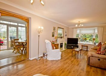Thumbnail 4 bed bungalow for sale in Merring Close, Hartburn, Stockton-On-Tees