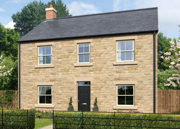 Thumbnail 4 bed detached house for sale in Guilden Place, Warkworth