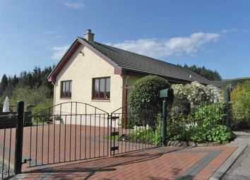 Thumbnail 3 bed bungalow for sale in Ardshonais, Kilchrenan, By Taynuilt