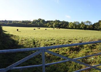 Thumbnail Land for sale in Pye Lane, Broad Town