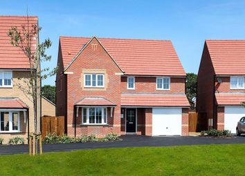 "Thumbnail 4 bedroom detached house for sale in ""Haltwhistle"" at Livingstone Road, Corby"