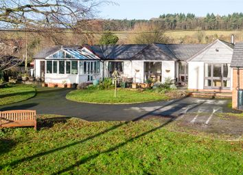 Thumbnail 3 bed cottage for sale in Bircher Common, Herefordshire