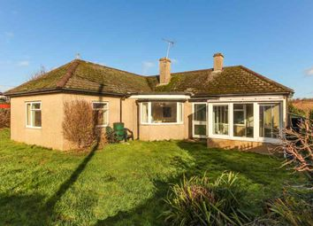 Thumbnail 3 bed detached bungalow for sale in Highmore Road, Sherborne