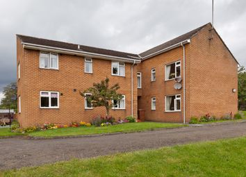 Thumbnail 1 bedroom flat to rent in Brierley Gardens, Otterburn, Northumberland