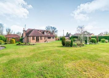 Thumbnail 5 bedroom bungalow for sale in Nuthurst, Horsham, West Sussex
