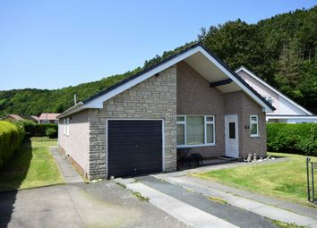 Thumbnail 3 bed bungalow for sale in Maesnewydd, Machynlleth, Powys
