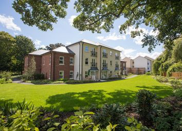 Thumbnail 1 bed flat for sale in Swan Meadow, Abergavenny