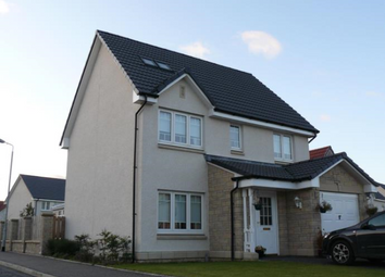 Thumbnail 4 bed detached house to rent in Honeywell Court, North Lanarkshire