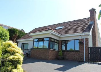 Thumbnail 4 bed bungalow for sale in Dallan Hill, Warrenpoint