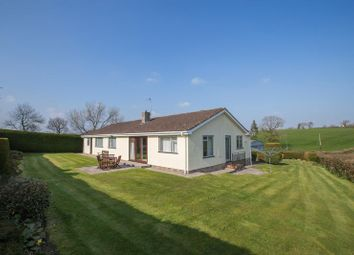 Thumbnail 3 bed detached bungalow for sale in Wales Lane, Down St. Mary, Crediton