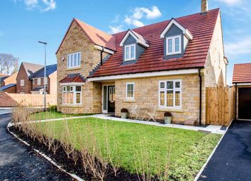 Thumbnail 4 bed detached house to rent in 20 Siskin Drive, Corbridge, Northumberland, 5Ab