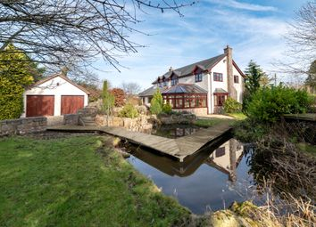 Thumbnail 4 bed detached house for sale in Walwen Lane, Axton, Holywell