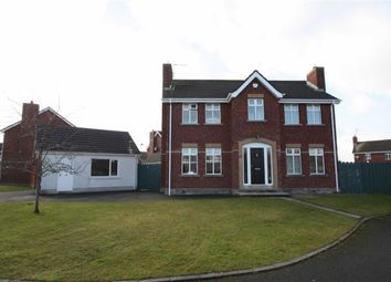 Thumbnail 4 bed detached house for sale in Lord Moira Park, Ballynahinch, Down