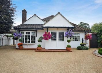Thumbnail 4 bed detached bungalow for sale in Windmill Lane, Costessey, Norwich