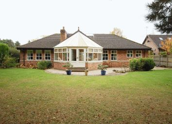 Thumbnail 4 bed detached bungalow for sale in Park Drive, Hepscott Park, Stannington, Morpeth