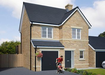 "Thumbnail 3 bed detached house for sale in ""The Newton"" at Browney Lane, Browney, Durham"