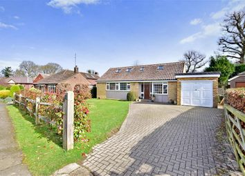 Thumbnail 4 bed bungalow for sale in The Birches, Mannings Heath, West Sussex