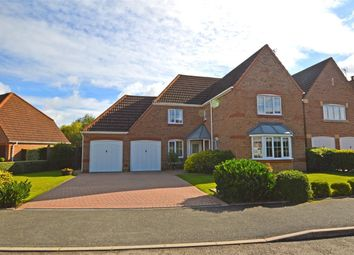Thumbnail 4 bed detached house to rent in Gold Avenue, Cawston, Rugby, Warwickshire