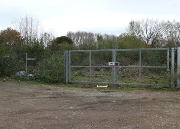 Thumbnail Commercial property for sale in Storage Land, Griffin Lane, Thorpe St Andrew, Norwich, Norfolk