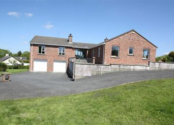 Thumbnail 4 bed detached house for sale in Bawn Hill Road, Ballynahinch, Down