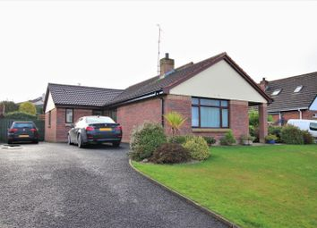 3 The Village Oaks, Ballykelly BT49. 4 bed detached bungalow for sale