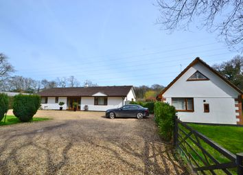 Thumbnail Commercial property for sale in Kennels & Cattery, Ferndown