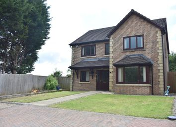 Thumbnail 4 bed detached house for sale in Llys Y Graig, Morriston, Swansea
