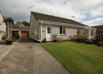Thumbnail Property for sale in Windsor Grove, Bodmin