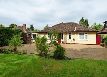 Thumbnail 3 bed bungalow for sale in Lower Road, Bookham, Leatherhead