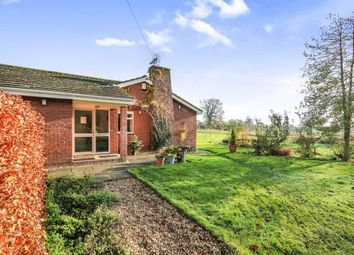 Thumbnail 5 bed bungalow for sale in Rockland All Saints, Attleborough, Norfolk