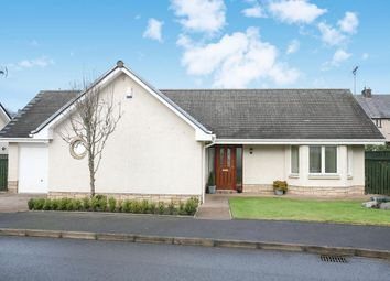 Thumbnail 3 bed bungalow for sale in Crosslaw Burn, Moffat