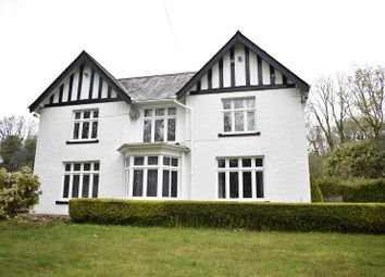 Thumbnail 5 bed detached house for sale in Cwmphil Road, Lower Cwmtwrch, Swansea