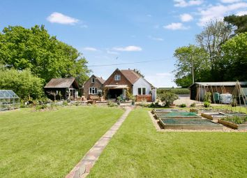 Thumbnail 3 bed detached bungalow for sale in Apless Lane, Worlds End, Hampshire