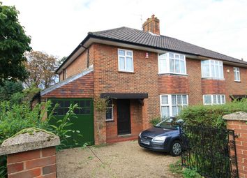 3 bed property to rent in Grove Walk, Norwich NR1