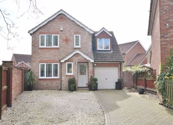 Thumbnail 4 bed detached house to rent in The Green, North Duffield, Selby