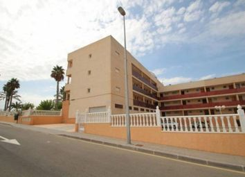 Thumbnail Studio for sale in Mil Palmeras, Orihuela Costa, Spain